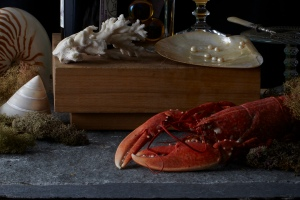 lobster-still-life